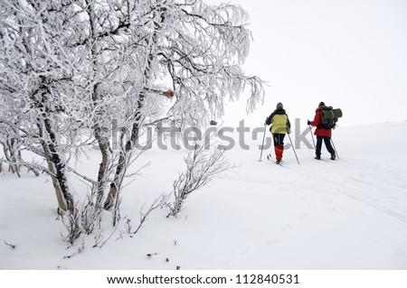 Long-distance skiing in snow covered landscape, Sweden.