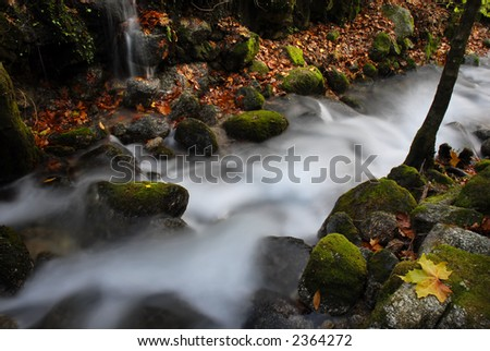 long exposure in a small river in autumn - stock photo