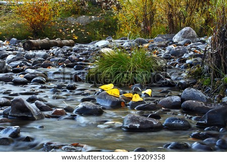 Long Exposure of Autumn Leaves on a Stream