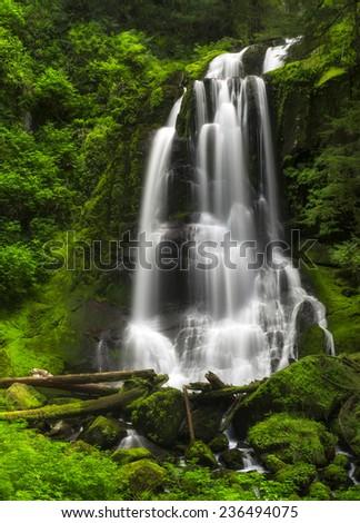 Long exposure of Kentucky Falls Waterfall surrounded by beautiful green foliage - stock photo