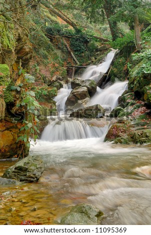 Long exposure photo of falls in the forest - stock photo