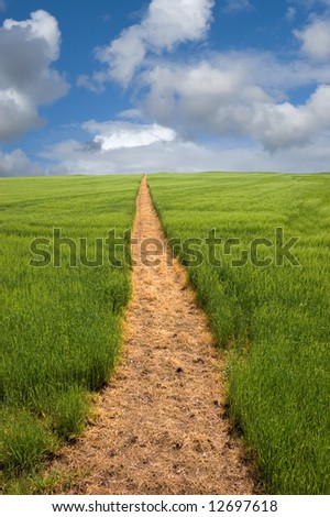 Long golden yellow footpath leads across green fields and up a hill to the distant horizon under a blue cloudy sky - stock photo