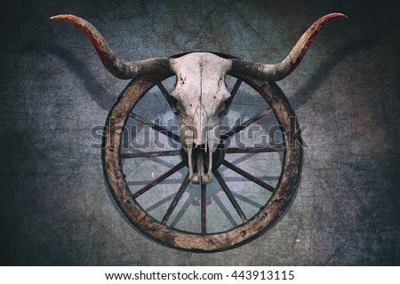 Long horned bull skull and old west wagon wheel hanged on a scratched wall - stock photo