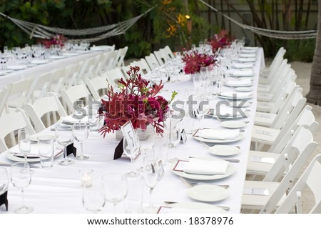 Long party table outdoor setting