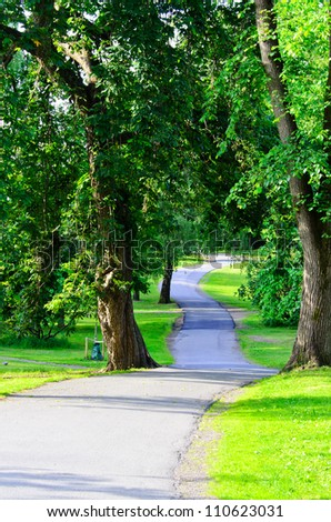 Long pathway into the garden of trees