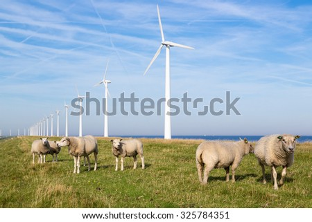 Long row Dutch wind turbines with herd of sheep in front of it - stock photo
