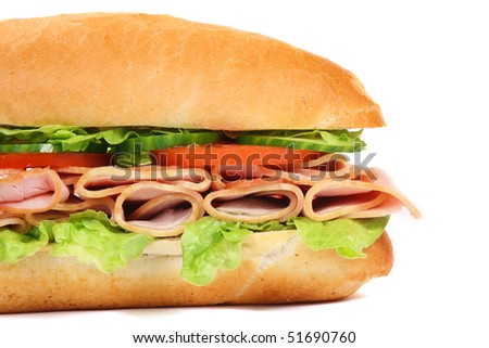 Long sandwich isolated on the white background - stock photo