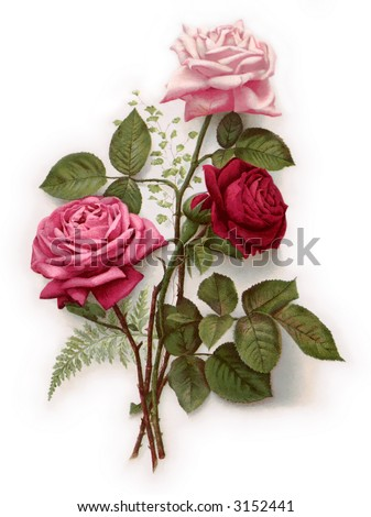 Long stemmed roses - circa 1890 Mother's Day greeting card illustration - stock photo