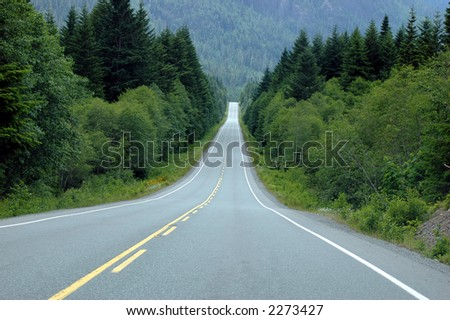 Long straight road through the rainforest - stock photo