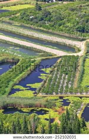 Long stripes of green land surrounded by narrow canals, Neretva delta, Croatia - stock photo