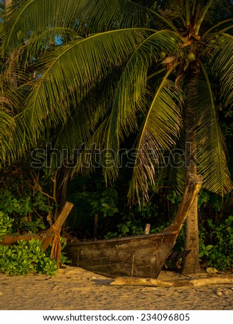 Long tailed boat in Thailand with coconut palm tree at sunrise
