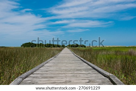 long wooden boardwalk extending over the marsh with trees in background - stock photo