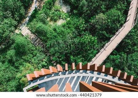 Long wooden bridge in the Forest.Top view from scenic point.Image is vintage effect and low light photo.