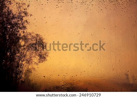 look at the misty dawn through a window with raindrops - stock photo