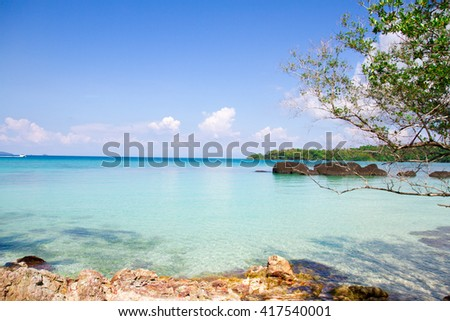 look at the sea view, spending time in summer vacation concept with tree shadow