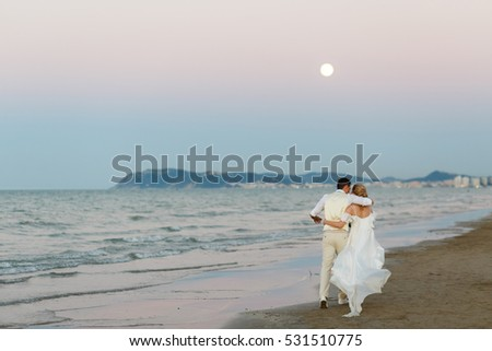 Look from behind at hugging wedding couple walking under evening sky along the shore