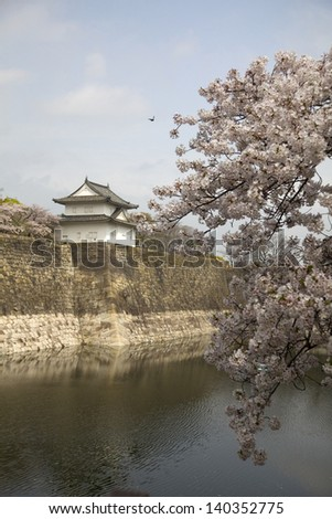 Look out tower on the wall of the moat surrounding Osaka Castle with cherry blossom in the foreground, Osaka, Japan. - stock photo