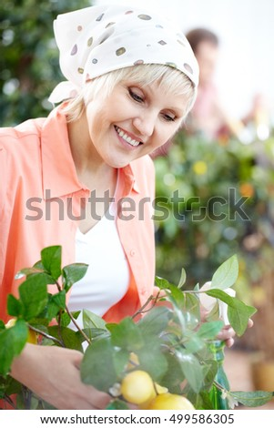 Looking after plants