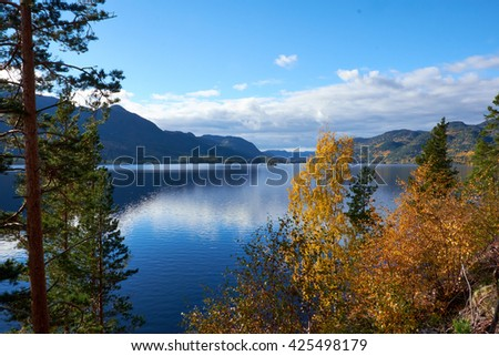 Looking at a calm norwegian lake surrounded by cliffs through birches and pines - stock photo