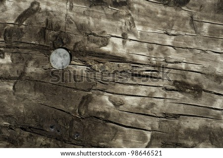 looking at the top of a railroad tie with a spike or nail useful for background or texture - stock photo