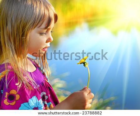 Looking on dandelion flower - stock photo