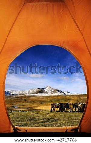 looking out of tent - stock photo