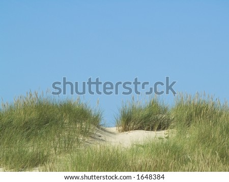 Looking over dunes to the blue sky