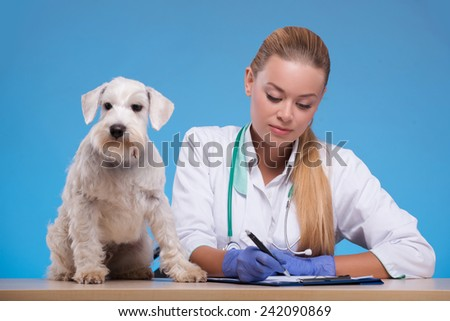 Looking over his medical chart. Shot of a young female veterinarian examining a dog in her office and writing in medical chart isolated against blue background - stock photo