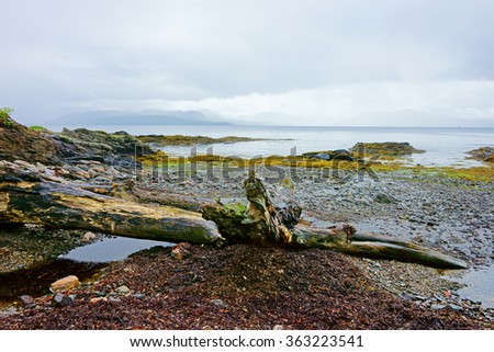 Looking over the Armadale Bay towards the mainland from the Isle of Skye under a cloudy sky, with drift wood on the beach, Scotland, UK - stock photo