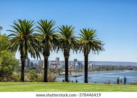 Looking through the palm trees in Kings Park to Perth - stock photo
