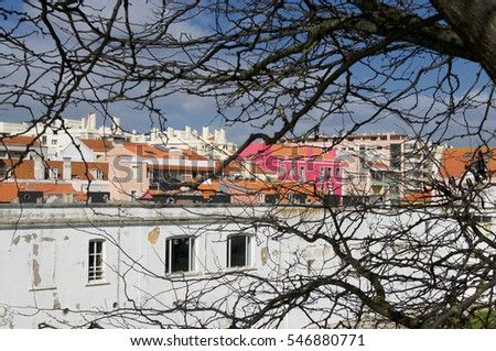 Looking through tree branches at coloured buildings in Lisbon, Portugal.