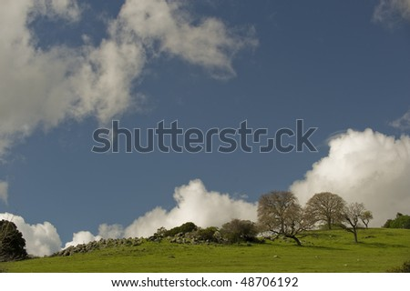 Looking up a green grassy hill with large stones and trees with only blue sky and clouds in the background on the Stanford University lands.