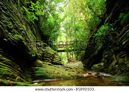 looking up at a bridge over a mountain creek - stock photo
