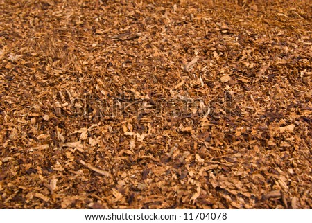 Loose cuts of dried tobacco form golden background texture .Shallow DOF. - stock photo