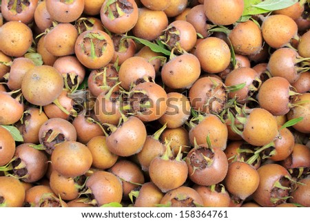 loquats autumn fruits typical product - stock photo
