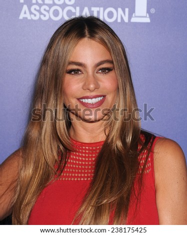 LOS ANGELES - AUG 14:  Sofia Vergara arrives to the HFPA Annual Installation Dinner 2014 on August 14, 2014 in Beverly Hills, CA                 - stock photo