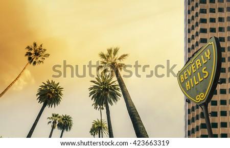 Los Angeles, Beverly Hill,  West Coast Palm Tree Sunshine - stock photo