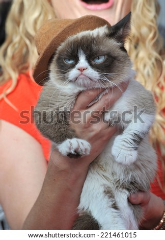 LOS ANGELES, CA - APRIL 13, 2014: Grumpy Cat at the 2014 MTV Movie Awards at the Nokia Theatre LA Live.  - stock photo