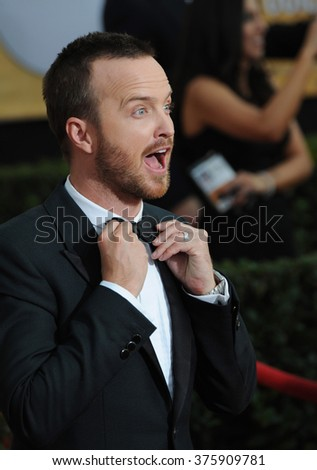 LOS ANGELES, CA - JANUARY 18, 2014: Aaron Paul at the 20th Annual Screen Actors Guild Awards at the Shrine Auditorium. - stock photo