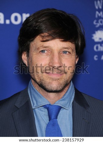 LOS ANGELES - DEC 04:  Tim Guinee arrives to the 2014 Beat The Odds on December 04, 2014 in Culver City, CA                 - stock photo