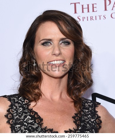 LOS ANGELES - FEB 14:  Amy Landecker arrives to the Make-Up Artists & Hair Stylists Guild Awards 2015  on February 14, 2015 in Hollywood, CA                 - stock photo