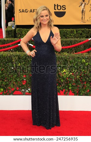 LOS ANGELES - JAN 25:  Amy Poehler at the 2015 Screen Actor Guild Awards at the Shrine Auditorium on January 25, 2015 in Los Angeles, CA - stock photo