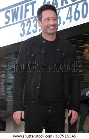 LOS ANGELES - JAN 25:  David Duchovny at the David Duchovny Hollywood Walk of Fame Star Ceremony at the Fox Theater on January 25, 2016 in Los Angeles, CA - stock photo