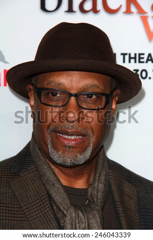 "LOS ANGELES - JAN 20:  James Pickens Jr at the ""Black Or White"" Los Angeles Premiere at a Regal Cinemas on January 20, 2015 in Los Angeles, CA - stock photo"