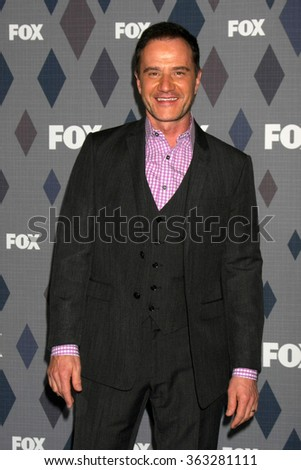 LOS ANGELES - JAN 15:  Tim DeKay_ at the FOX Winter TCA 2016 All-Star Party at the Langham Huntington Hotel on January 15, 2016 in Pasadena, CA - stock photo