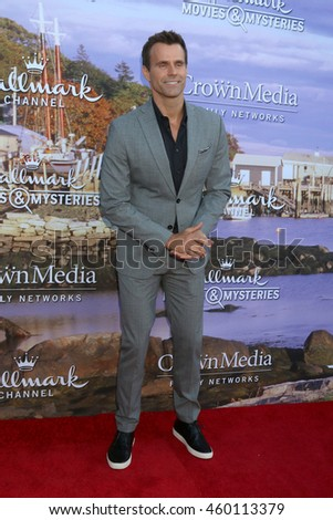 LOS ANGELES - JUL 27:  Cameron Mathison at the Hallmark Summer 2016 TCA Press Tour Event at the Private Estate on July 27, 2016 in Beverly Hills, CA