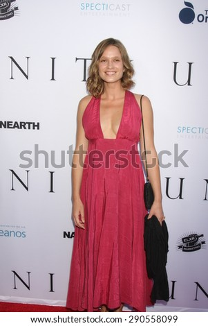 """LOS ANGELES - JUN 24:  Amy Ferguson at the """"Unity"""" Documentary World Premeire at the Director's Guild of America on June 24, 2015 in Los Angeles, CA - stock photo"""