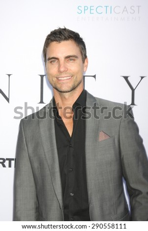 """LOS ANGELES - JUN 24:  Colin Egglesfield at the """"Unity"""" Documentary World Premeire at the Director's Guild of America on June 24, 2015 in Los Angeles, CA - stock photo"""