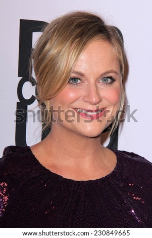 LOS ANGELES - NOV 11:  Amy Poehler at the PEN Center USA 24th Annual Literary Awards at the Beverly Wilshire Hotel on November 11, 2014 in Beverly Hills, CA - stock photo