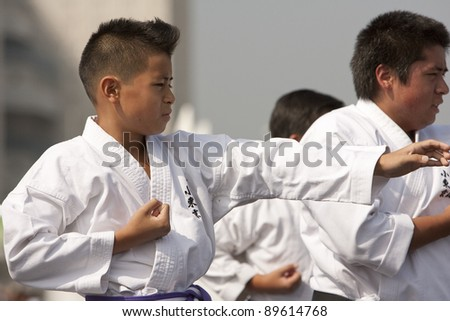 LOS ANGELES - SEPT 25:  Ryan, 11, and Daniel 11, perform a traditional Kata at Little Tokyo's Cherry Blossom Festival on September 25, 2011 in Los Angeles, CA. - stock photo